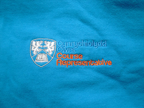Course Rep Hoody