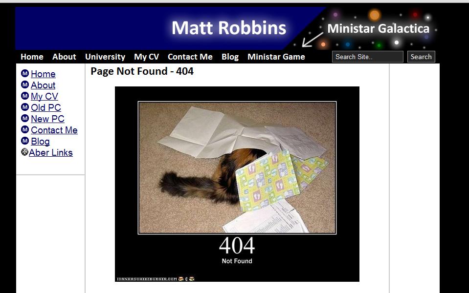 404 status cat